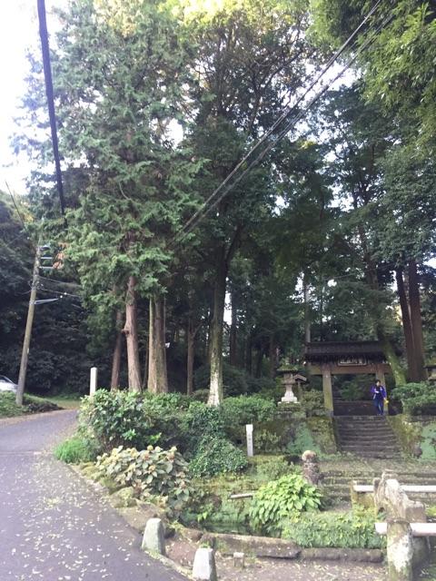 f:id:yumi-kuroda:20181029090142j:plain