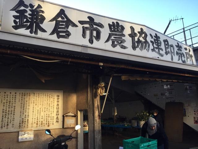 f:id:yumi-kuroda:20190211073740j:plain