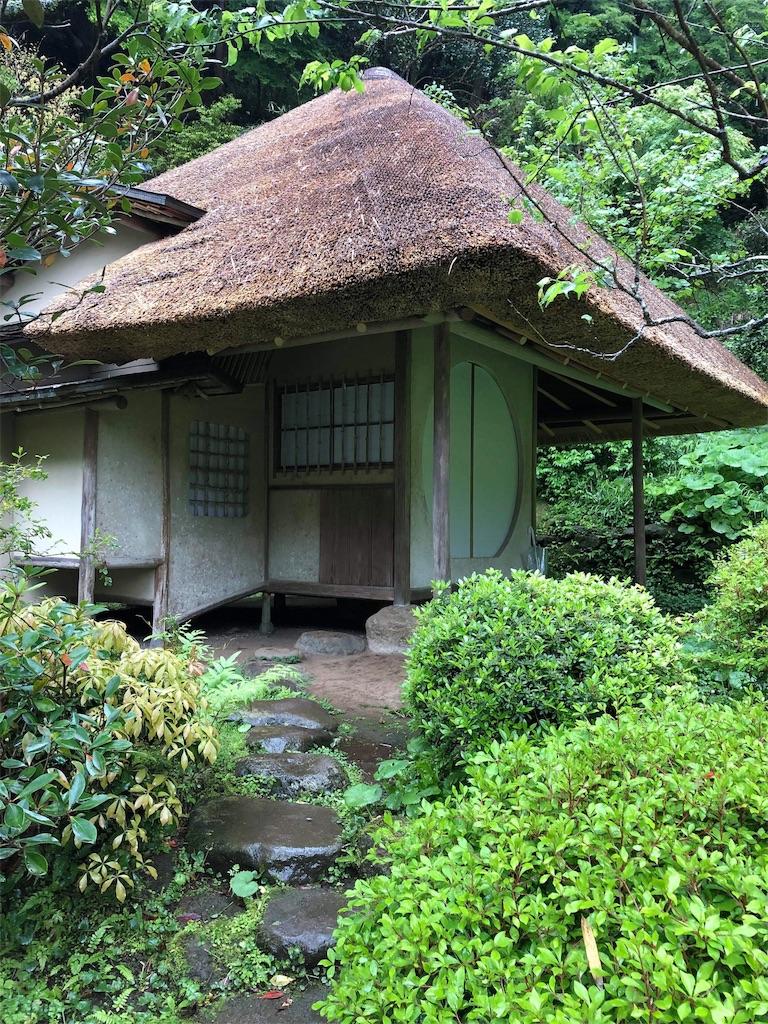 f:id:yumi-kuroda:20190502141000j:image