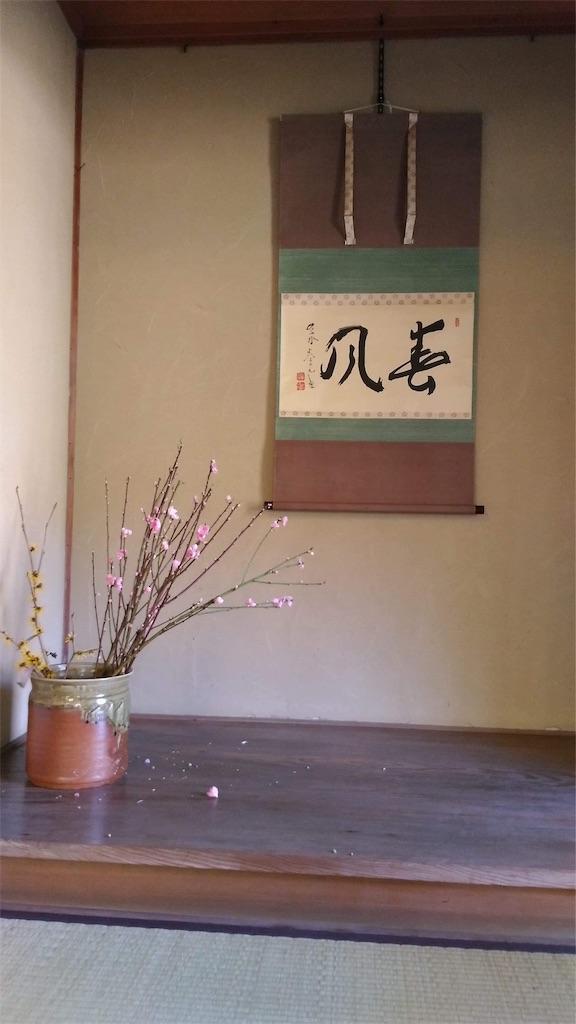 f:id:yumi-kuroda:20200216051009j:image
