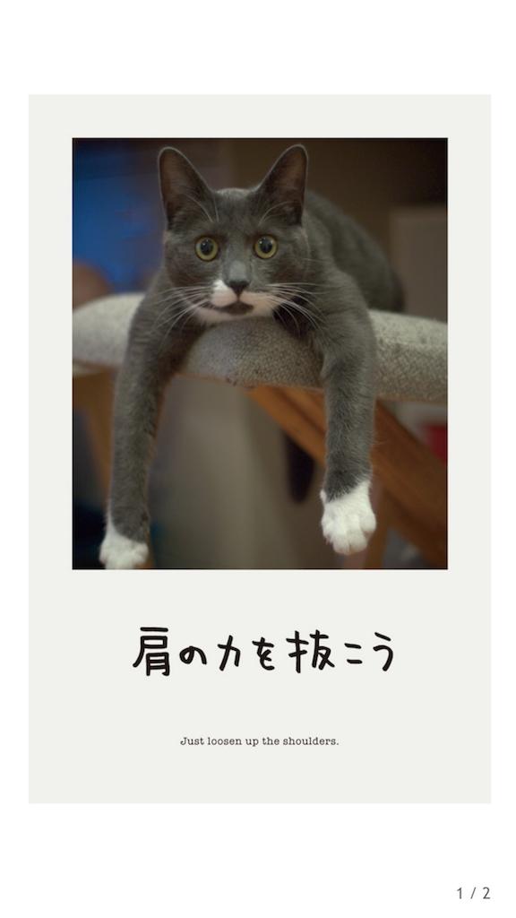 f:id:yumi458:20170511215425p:image