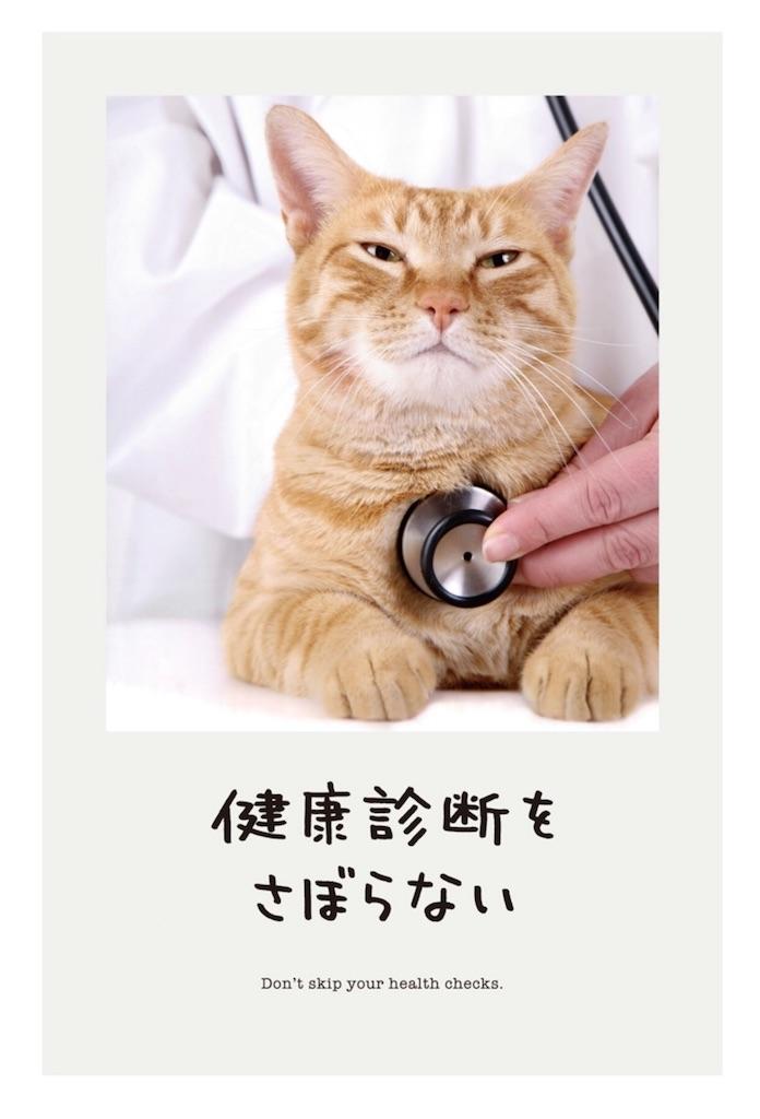 f:id:yumi458:20170726214406j:image
