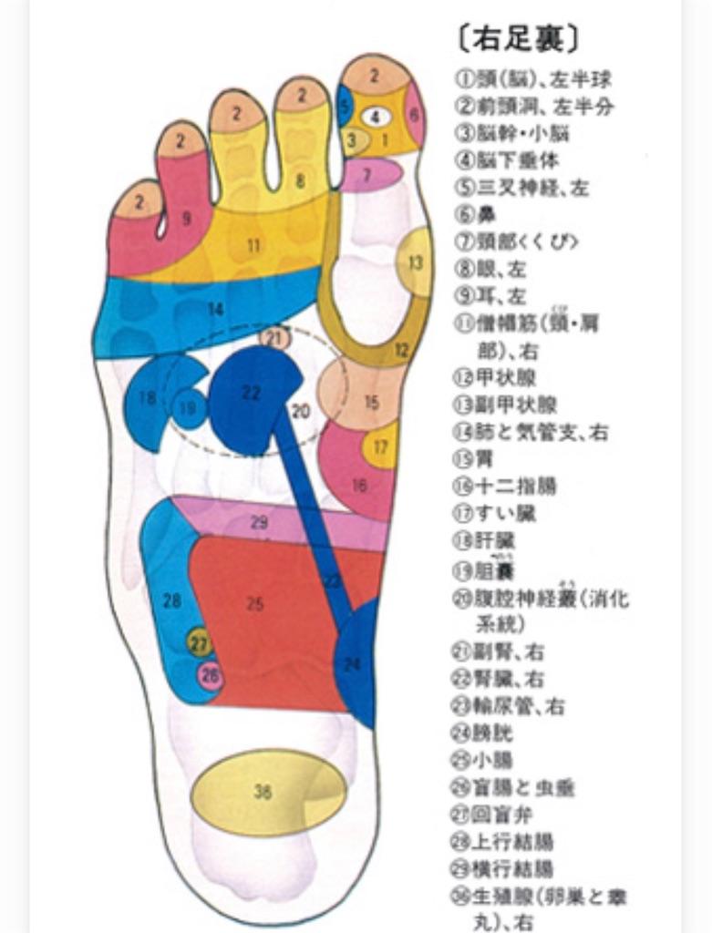 f:id:yumi458:20200917060714j:image