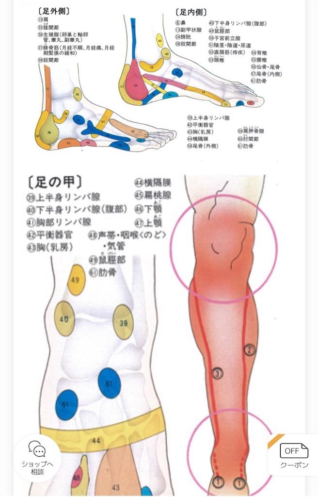 f:id:yumi458:20200917060740j:image