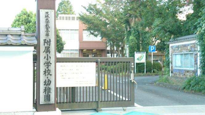 f:id:yumi98chan:20200927012529j:plain