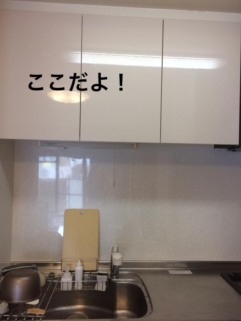 f:id:yumidori12:20170507225635j:plain