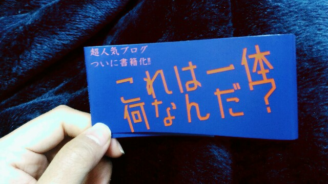 f:id:yumihikoshi:20161227112328j:image