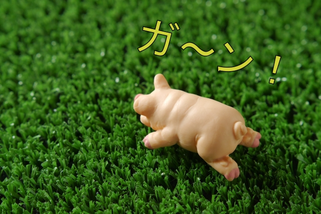 f:id:yumikaorururu:20180113000156j:plain