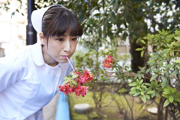 f:id:yumikaorururu:20180228163132j:plain