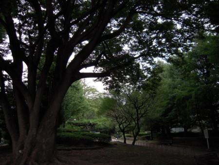f:id:yumiko2008:20101017155909j:image