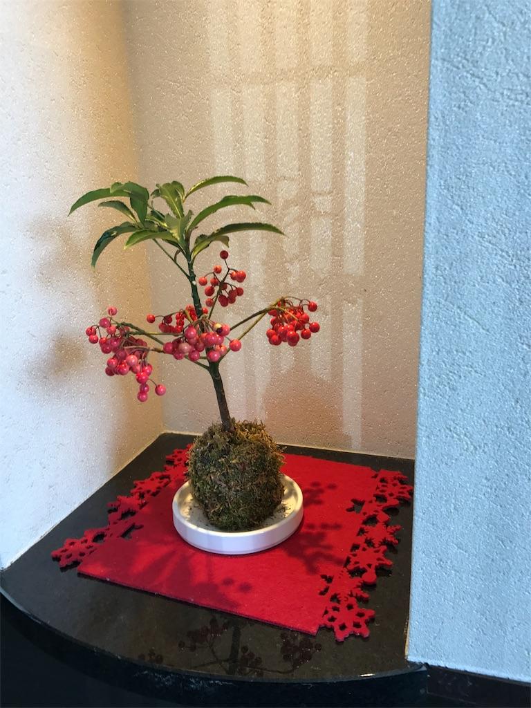 f:id:yumiko531:20170213220509j:image