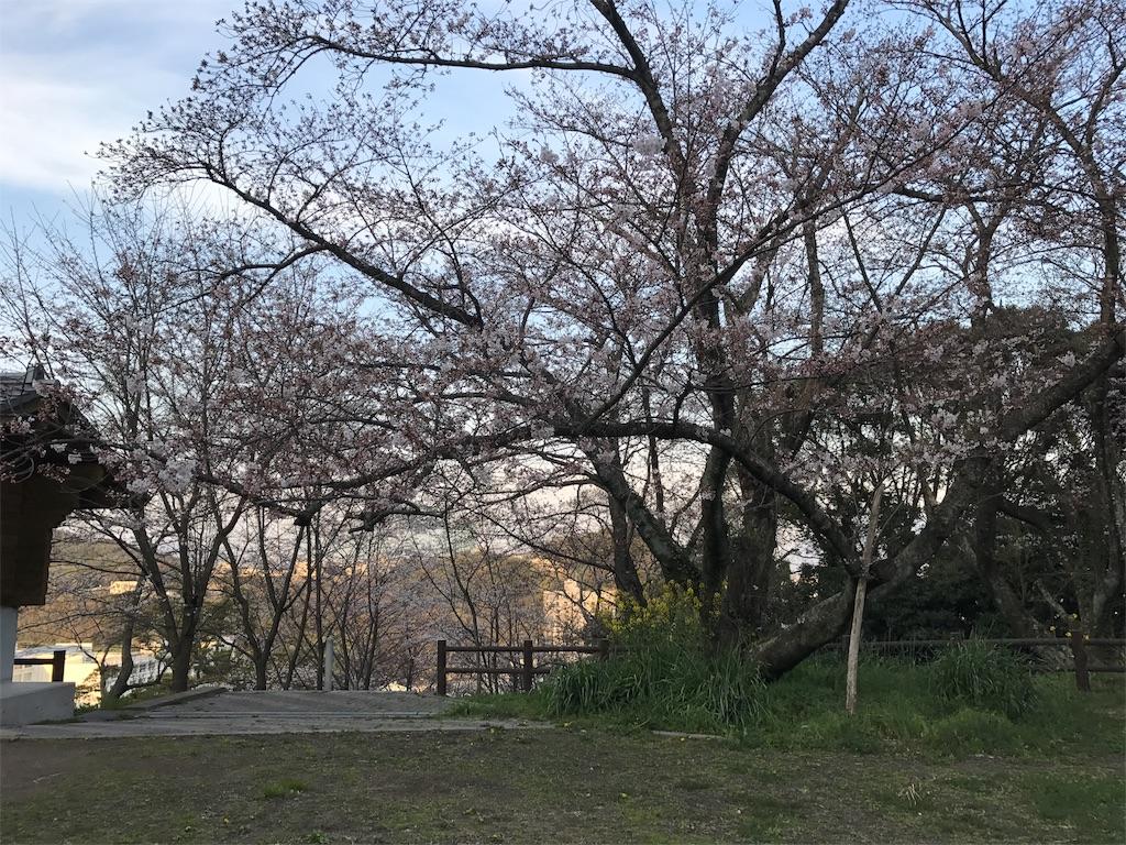f:id:yumiko531:20170404222616j:image