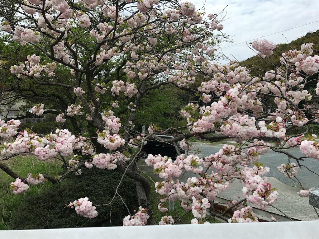 f:id:yumiko531:20170422230356j:image