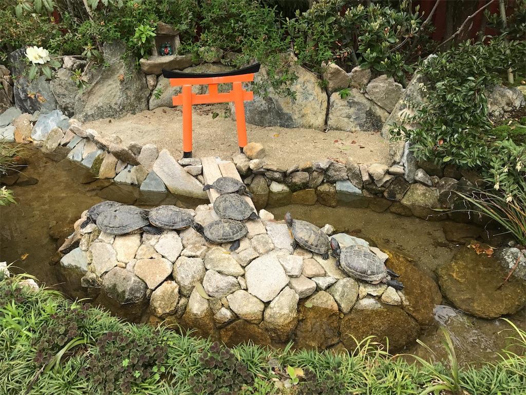 f:id:yumiko531:20170422230506j:image