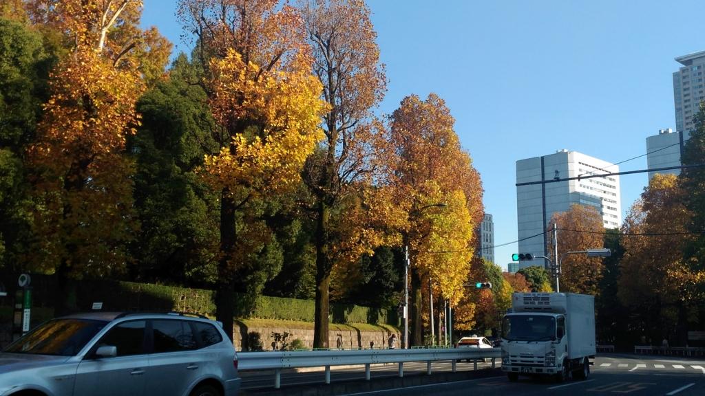 f:id:yumikoishii:20161113002530j:plain