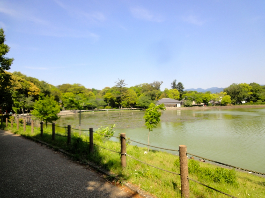 f:id:yumimi-kyoto:20160608153051j:plain