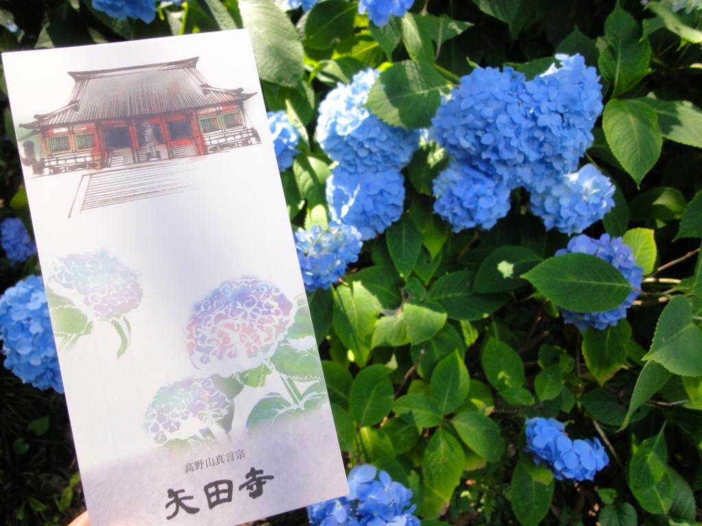 f:id:yumimi-kyoto:20160614142451j:plain