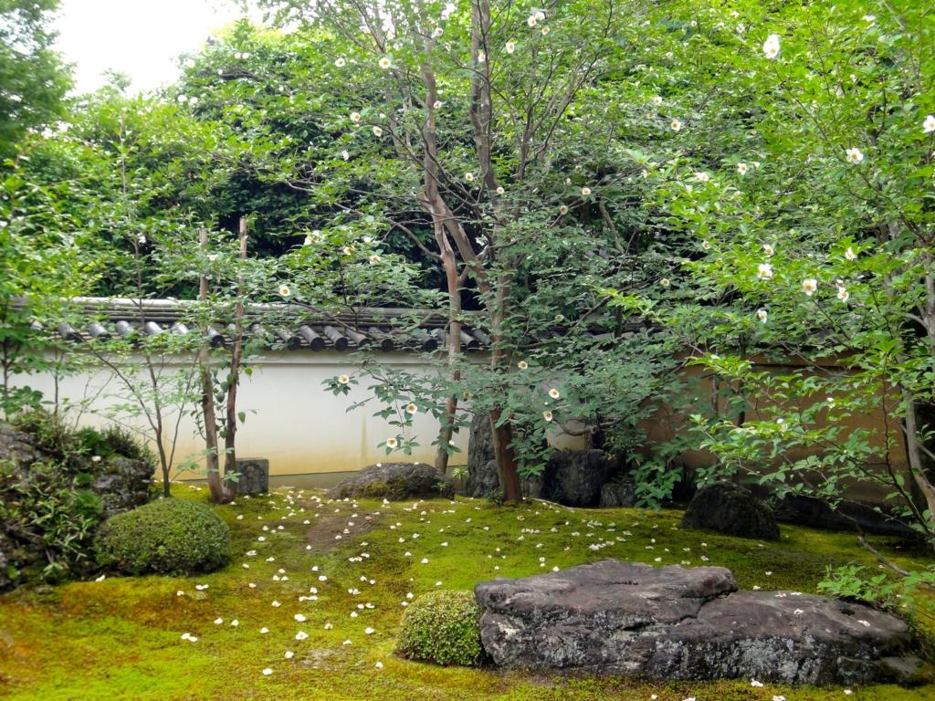 f:id:yumimi-kyoto:20160616151404j:plain