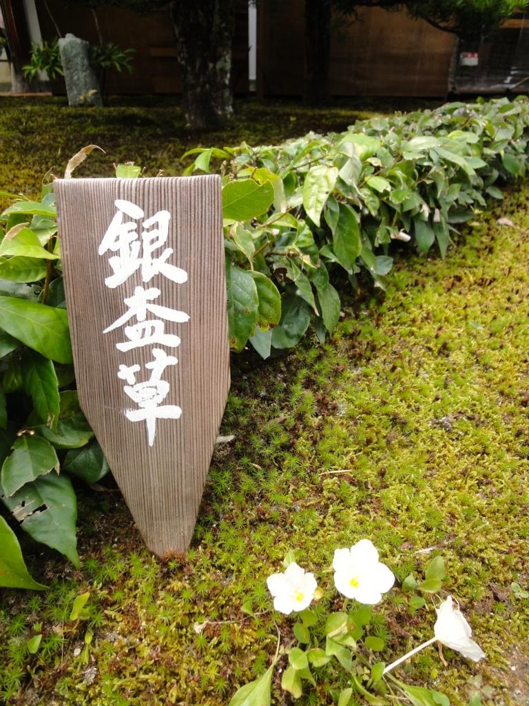 f:id:yumimi-kyoto:20160616152220j:plain