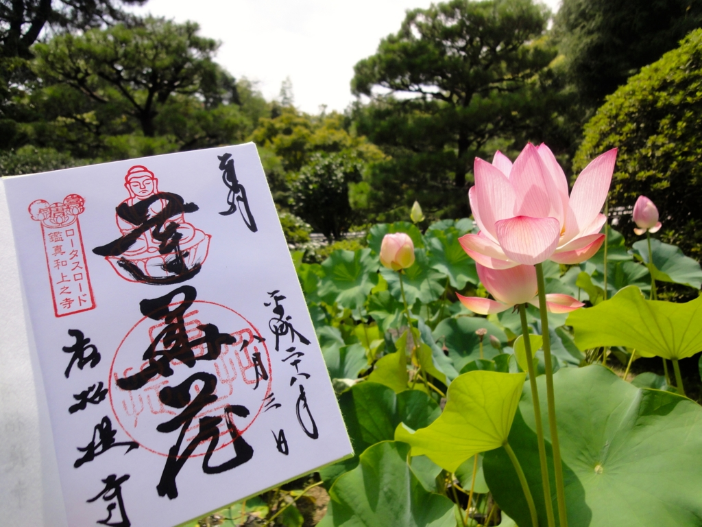 f:id:yumimi-kyoto:20160805142437j:plain