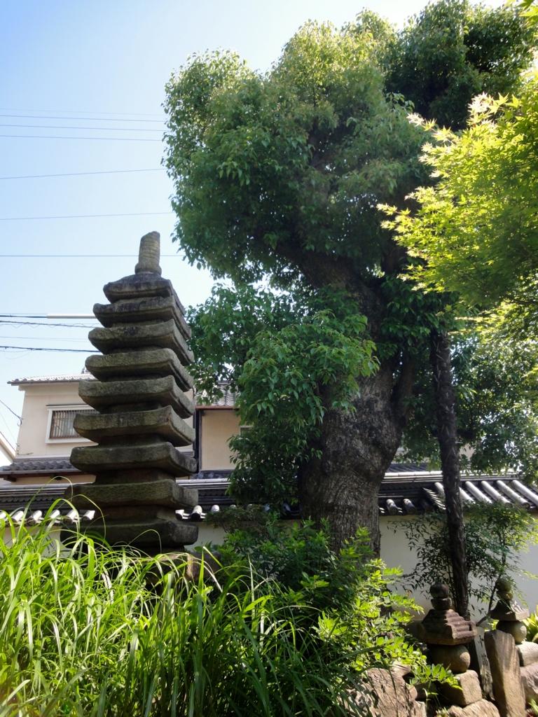 f:id:yumimi-kyoto:20160820220702j:plain