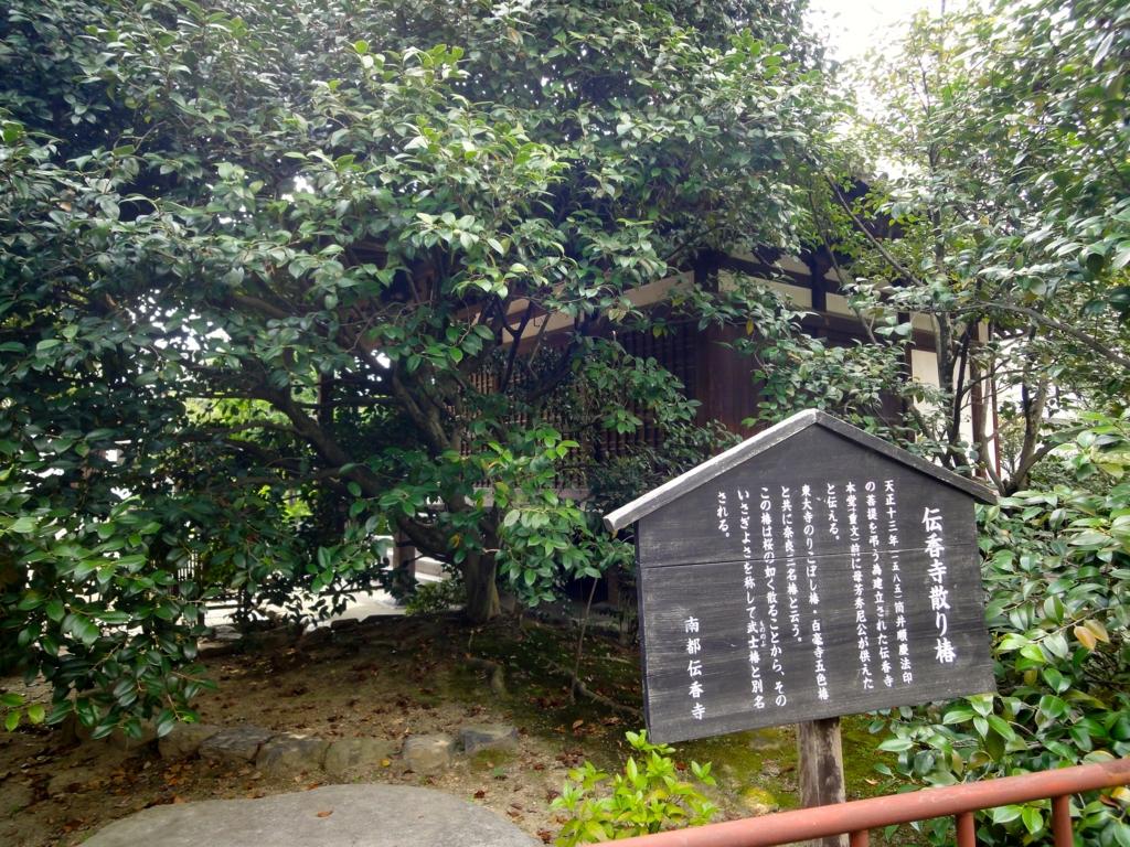f:id:yumimi-kyoto:20160822165148j:plain