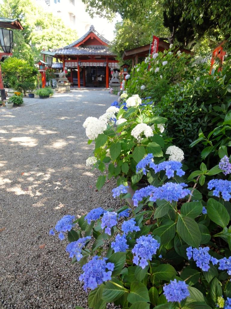 f:id:yumimi-kyoto:20160928151531j:plain