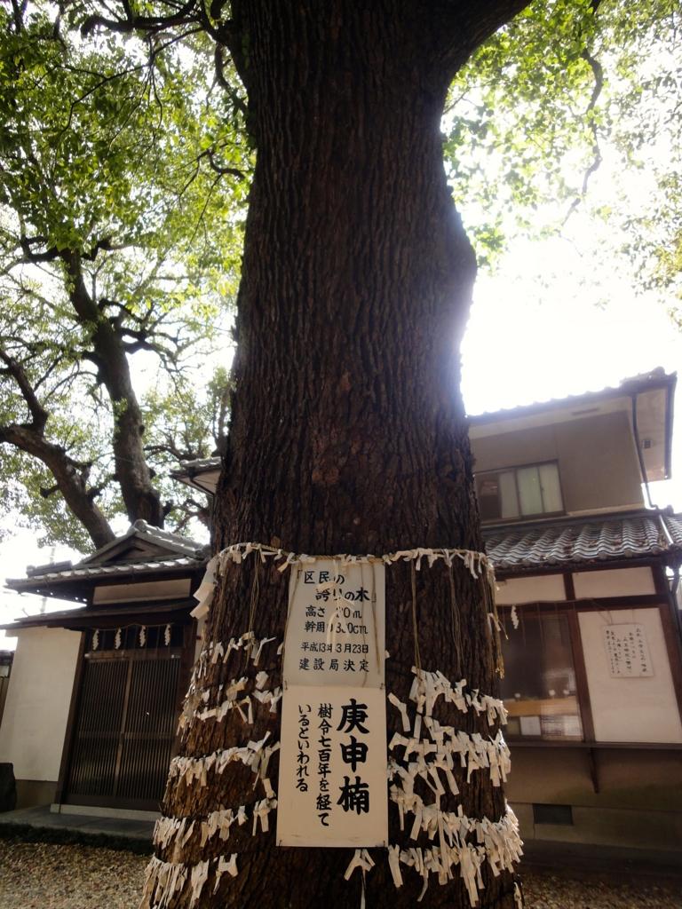 f:id:yumimi-kyoto:20161020132655j:plain