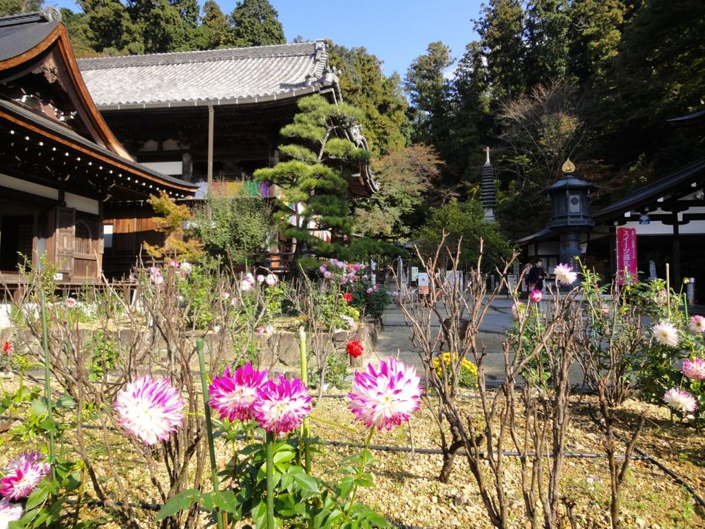 f:id:yumimi-kyoto:20161114130355j:plain