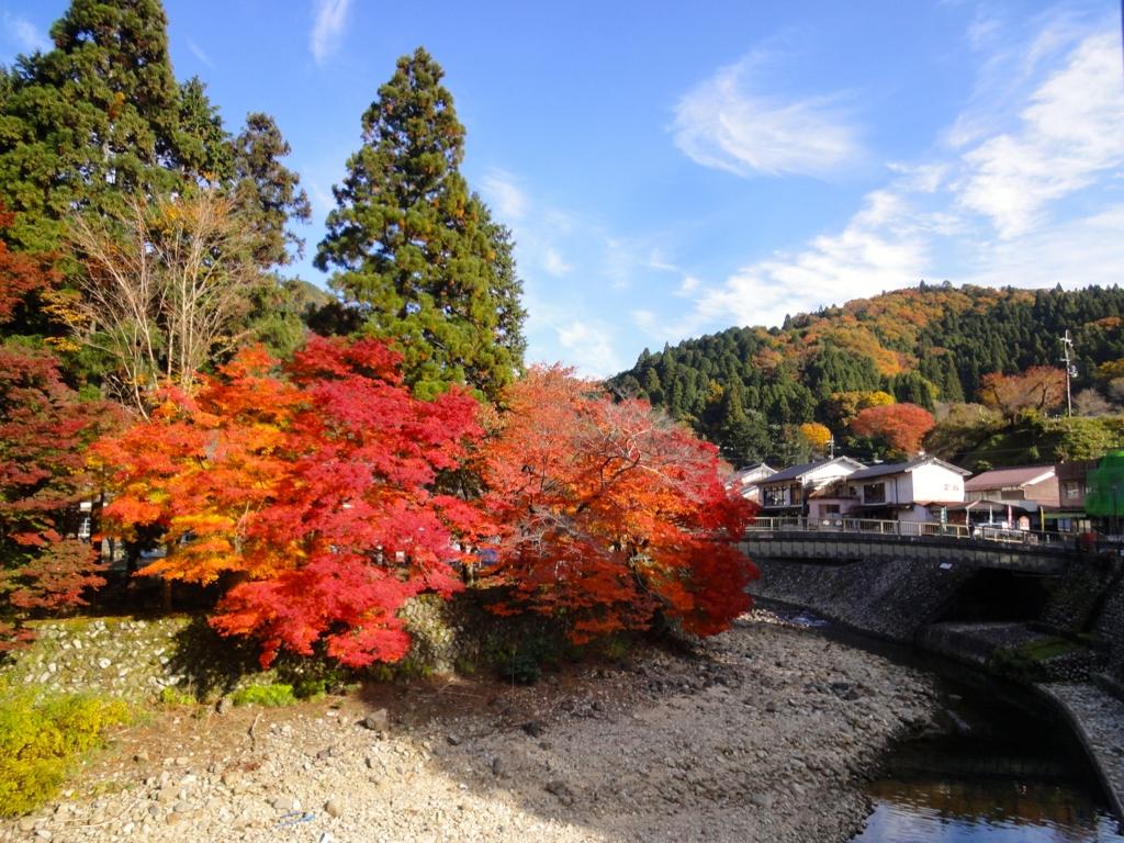 f:id:yumimi-kyoto:20161121145357j:plain