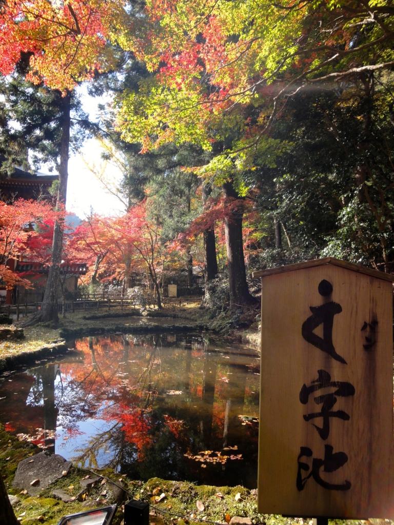 f:id:yumimi-kyoto:20161121162154j:plain