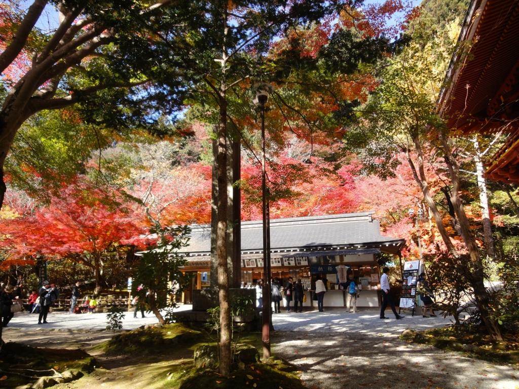 f:id:yumimi-kyoto:20161121162712j:plain
