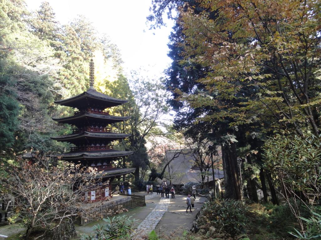 f:id:yumimi-kyoto:20161122075023j:plain