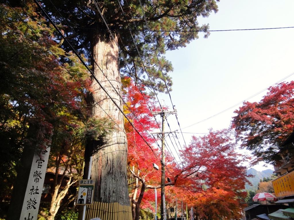 f:id:yumimi-kyoto:20161123153723j:plain