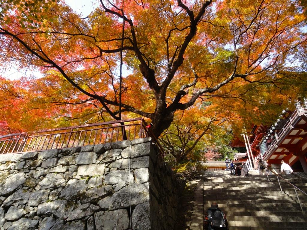 f:id:yumimi-kyoto:20161123155236j:plain