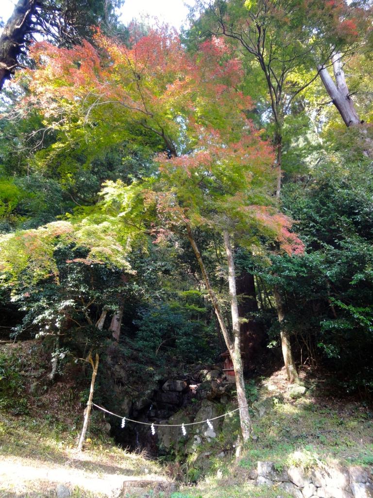 f:id:yumimi-kyoto:20161124135936j:plain