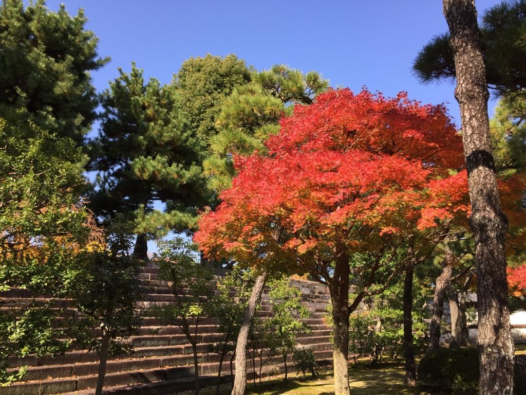 f:id:yumimi-kyoto:20161124155332j:plain