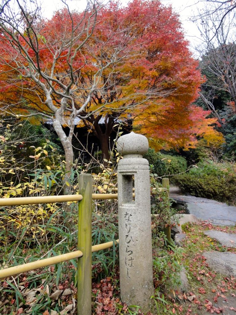 f:id:yumimi-kyoto:20170118165240j:plain