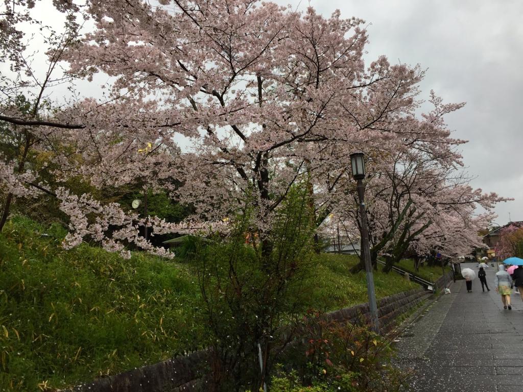 f:id:yumimi-kyoto:20170411163727j:plain