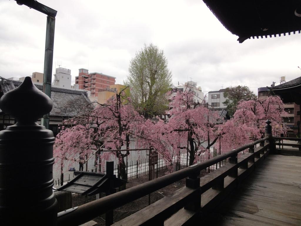 f:id:yumimi-kyoto:20170412170112j:plain