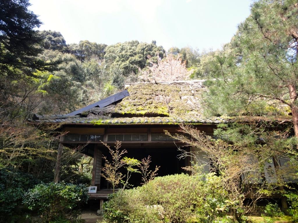 f:id:yumimi-kyoto:20170413172239j:plain