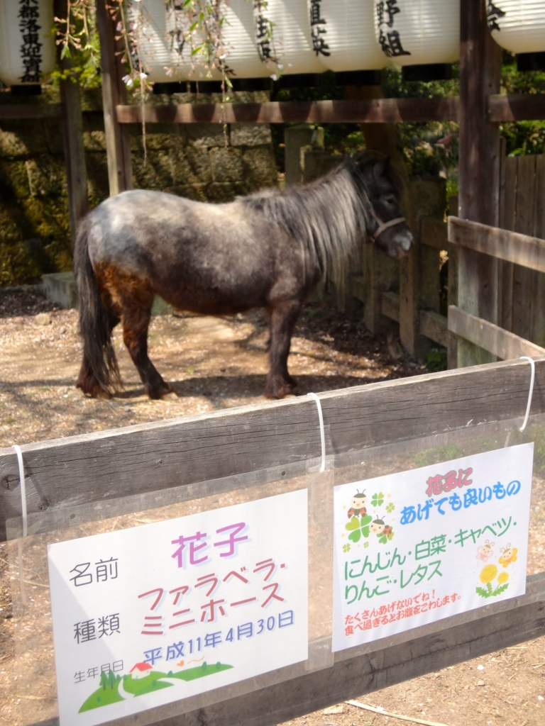 f:id:yumimi-kyoto:20170415064236j:plain
