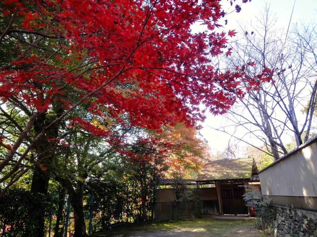 f:id:yumimi-kyoto:20180309163708j:plain