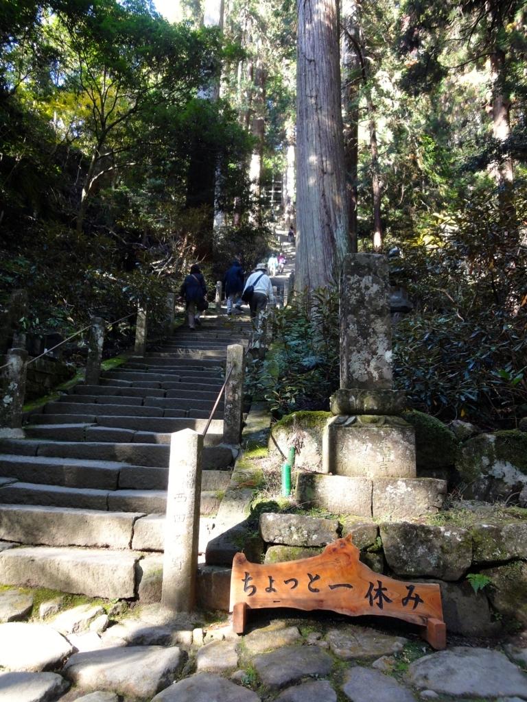 f:id:yumimi-kyoto:20180316155216j:plain