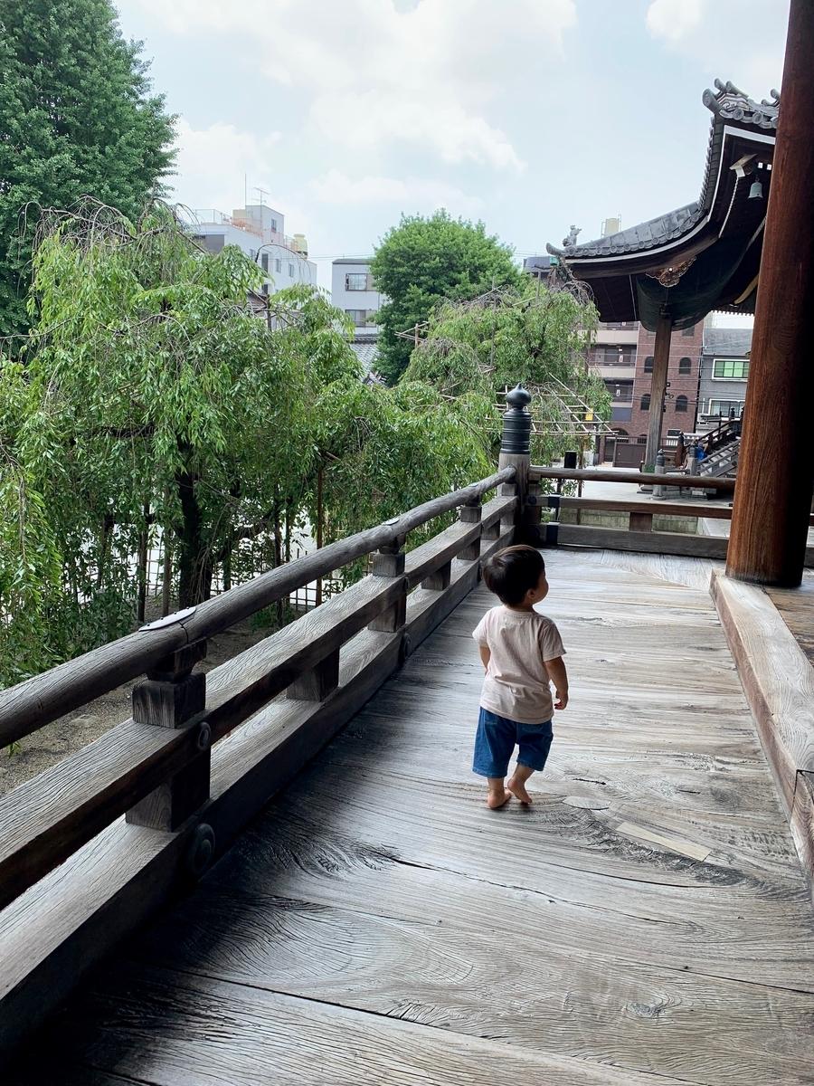 f:id:yumimi-kyoto:20190621164458j:plain