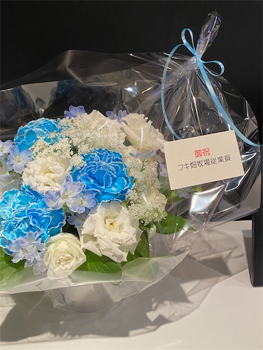 f:id:yumitokoh:20210418133225j:image