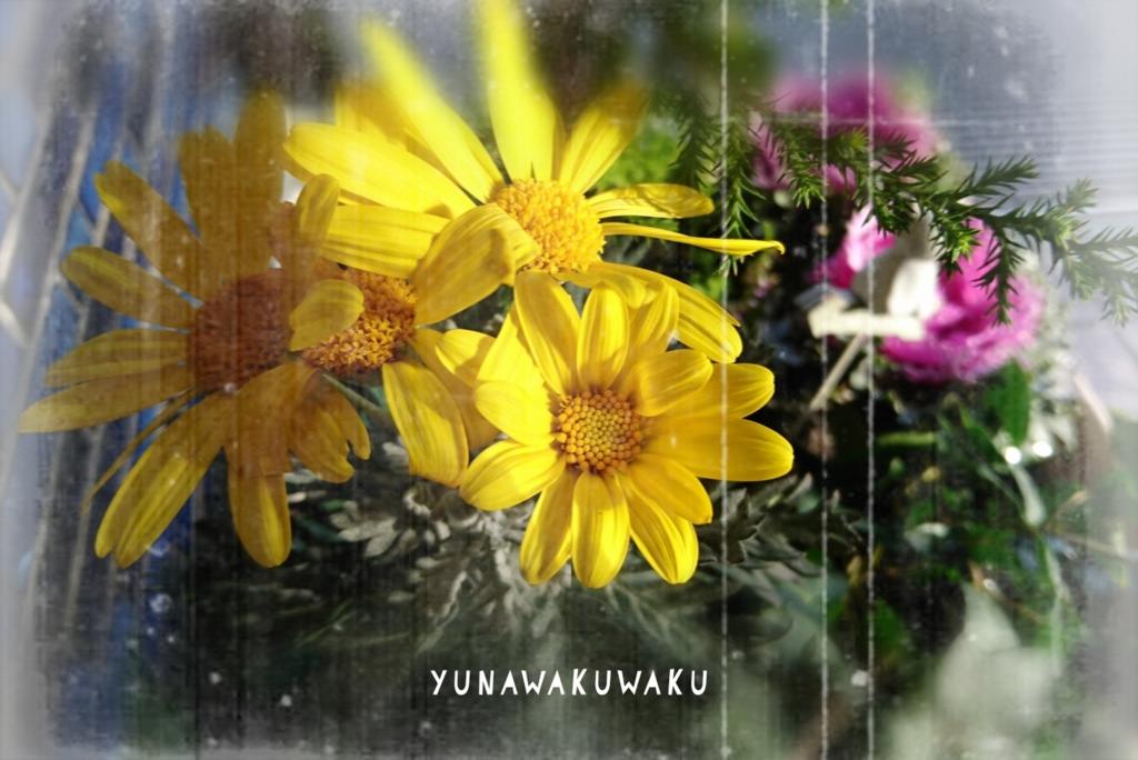 f:id:yunawakuwaku:20161227185856j:plain