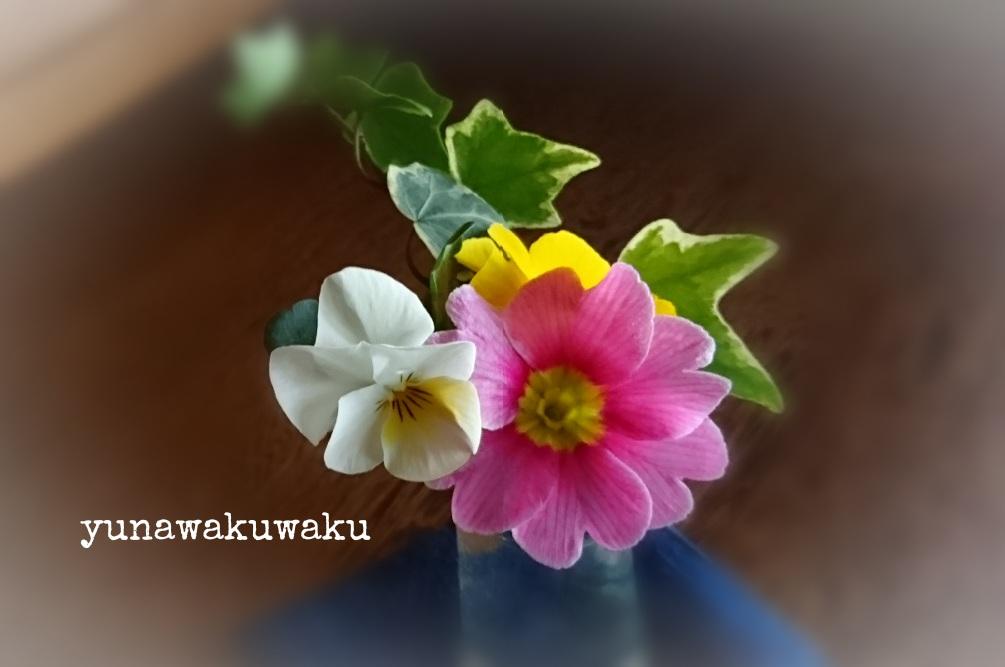 f:id:yunawakuwaku:20170205233858j:plain