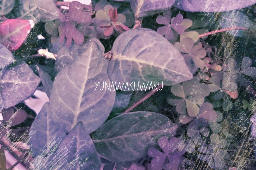 f:id:yunawakuwaku:20170220224537j:plain