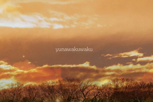 f:id:yunawakuwaku:20170328231946j:plain